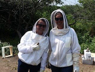 Bee farm tourists enjoying the day