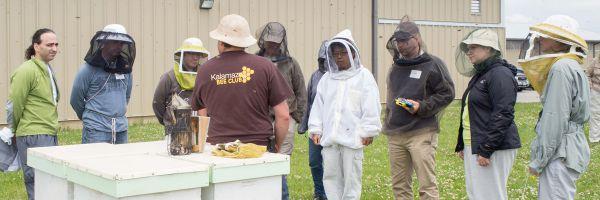 Beekeeping Workshop by the OBA