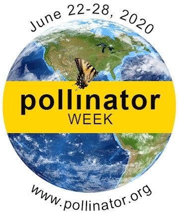 National Pollinator Week Kicks off June 17th